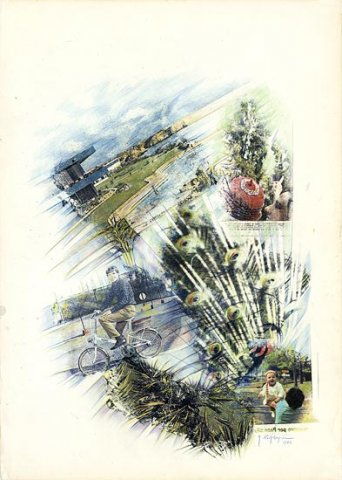 PENNE DI PAVONE, 1977 Riporti fotografici, matite colorate su carta cm 50x70