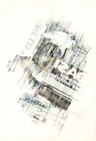 AIRONE, 1991 Rip. fotografici e matite colorate su carta cm 33x48